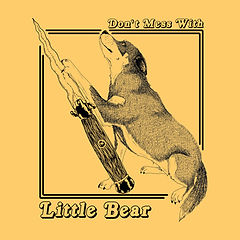 little bear shirt.jpg