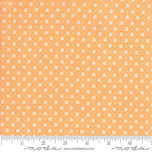 Sunday Picnic - Daisy Trail Orange $28 pm