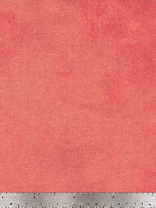 Palette - Salmon $14pm