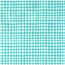 Gingham Play - Aqua $28 pm