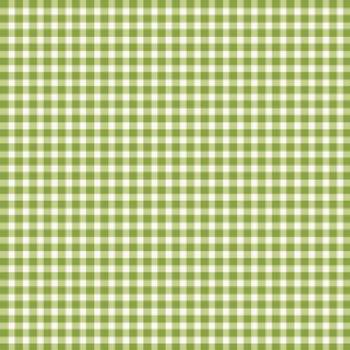 Beautiful Basics - Gingham Green Apple $28 pm