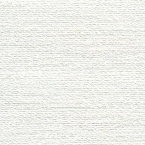 Rasant Silver #0411