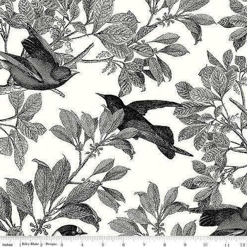 Classic Caskata - Birds Black $30 pm