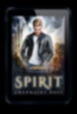 Spirit eReader web.png