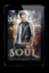 Soul eReader web.png