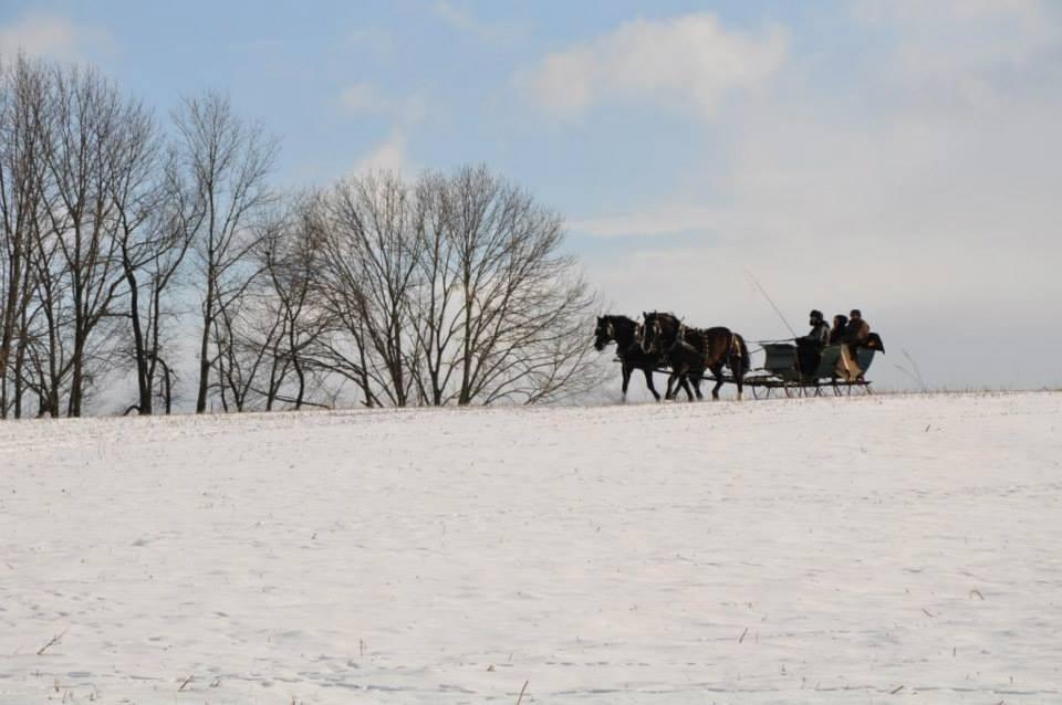 sleigh hill 2.jpg