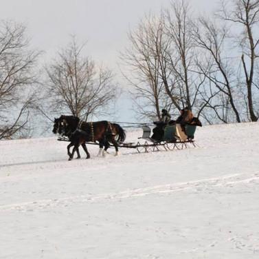 sleigh hill.jpg
