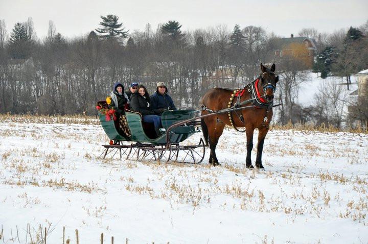 sleigh pretty.jpg