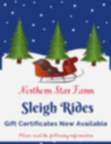 Copy of Copy of Sleigh Riding.jpg