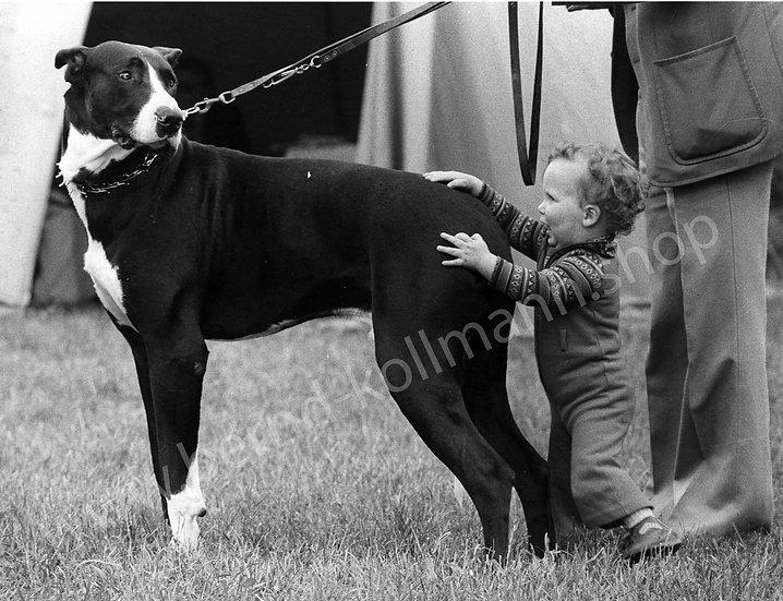 Hund mit Kind - Tuchfühlung