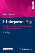 Cover_E-Entrepreneurship_7.jpg