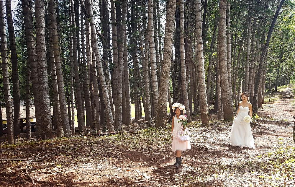 Wedding Elopement at Aiea Loop Trail