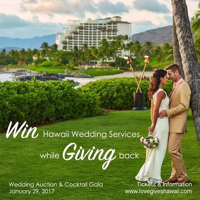 Love Gives Hawaii