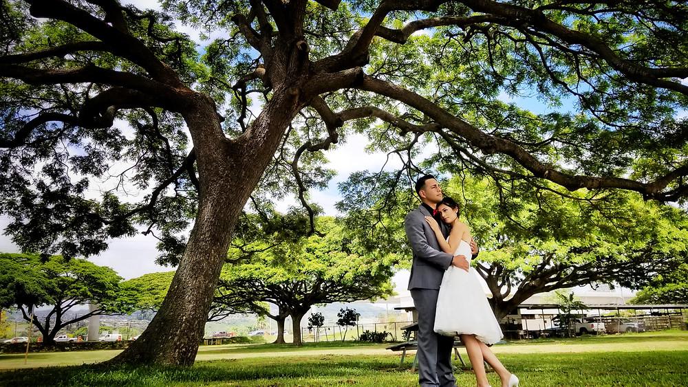 Hawaii Civil Wedding