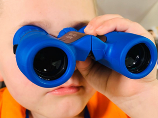Playco Binoculars Review