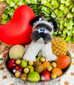 Ancheta Frutas Tropicales
