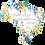 Thumbnail: Aquarela Brasileira