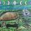 Thumbnail: Turtle of The Sea