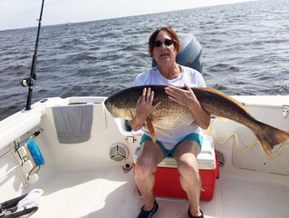 POA President catches citation red drum