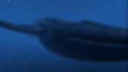 theBlue.png