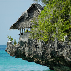 Field course in Zanzibar, August 2018