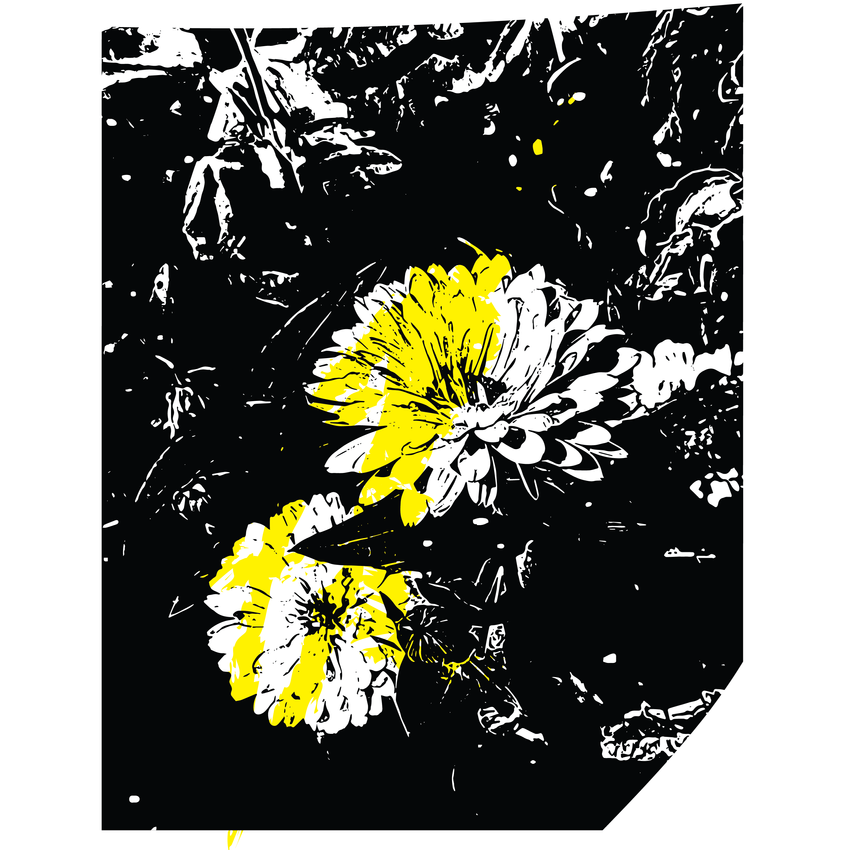 flowers-03.png