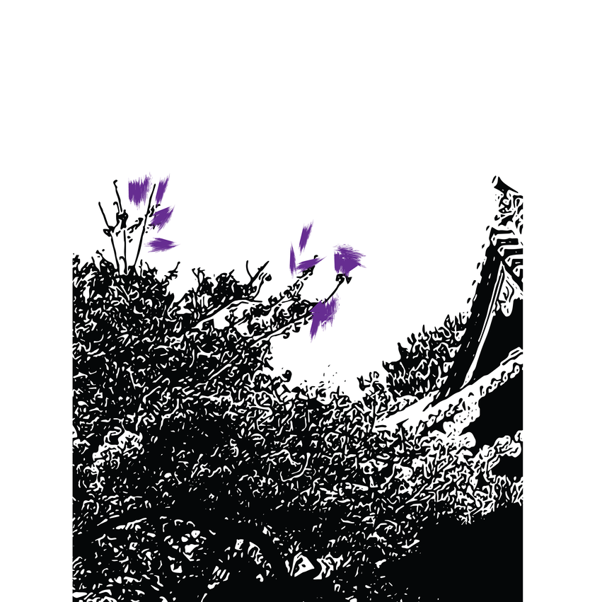 flowers 5-06.png