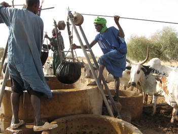 Diawambé: scène de puits, 2007