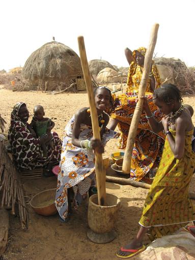 Diawambé: scène de pilage du mil par les fillettes, février 2008