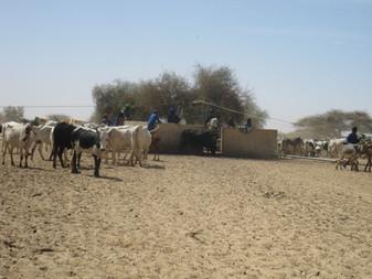 Diawambé : le principal puits du village, janvier 2012