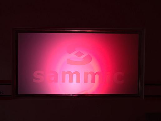 SAMMIC LUZ
