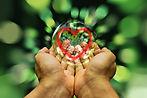 hands-4153925_960_720.jpg
