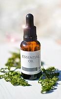 essential-oils-2385087_960_720.webp