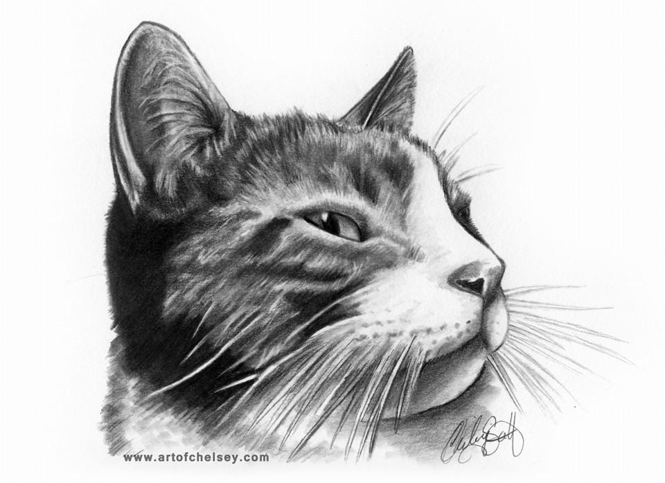 Bumpkin portrait