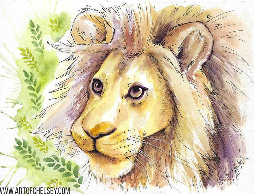 Lion sketch in watercolor and ink