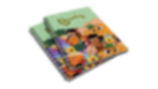 caderno_transparencia.png
