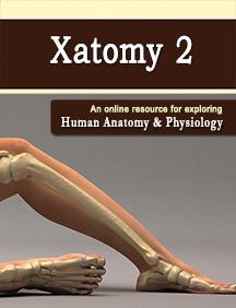 XatomyPay2.png