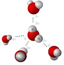 water-hydrogen-bonds.png