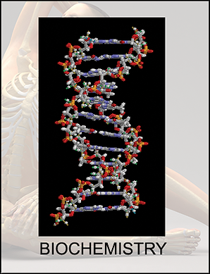 tile-biochem.png