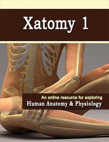 XatomyPay1.png