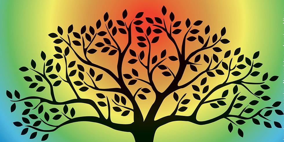 Rencontre du bien être et de l'éveil de soi (1)