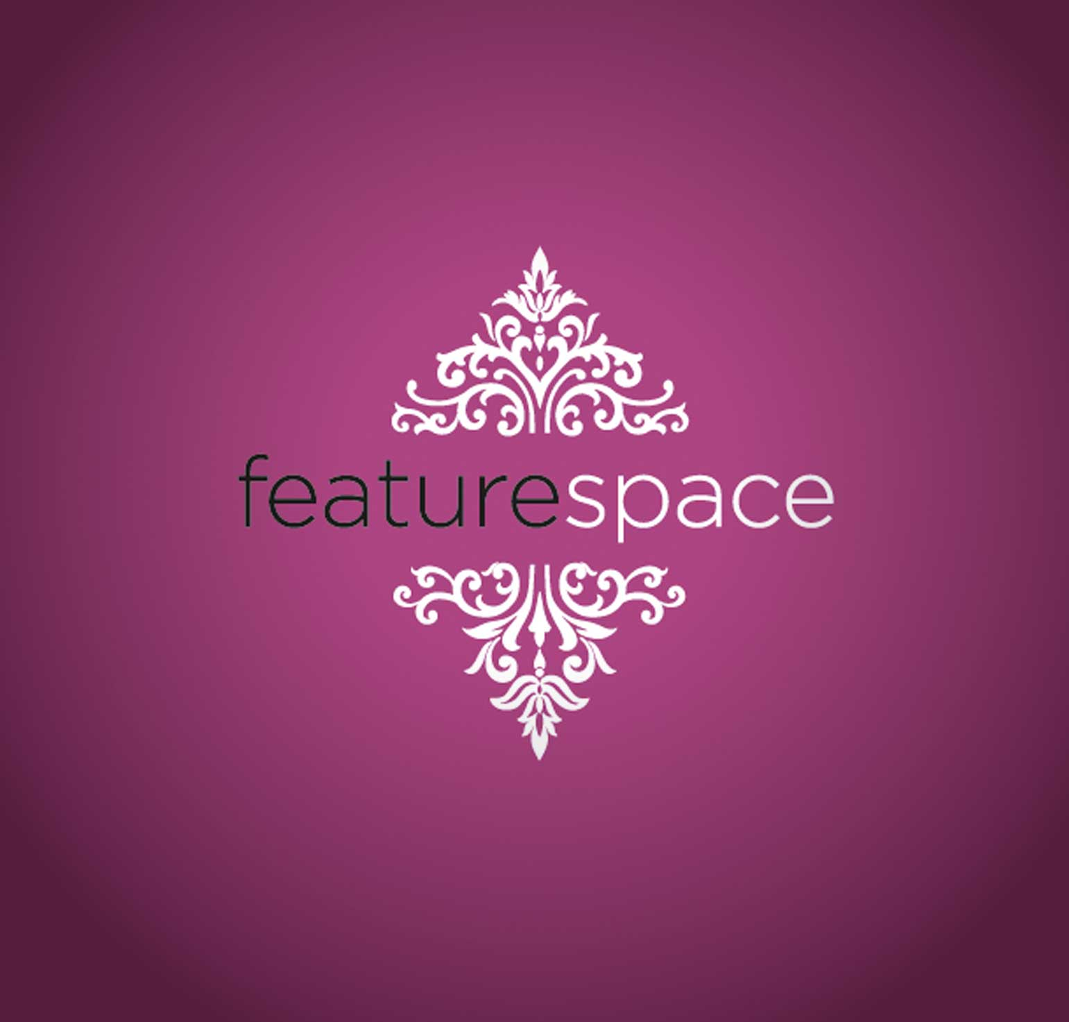 Feature Space