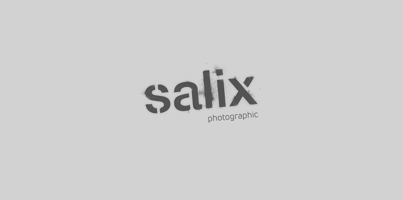 Salix Photographic