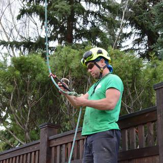 Staff Joel Miller ISA certified arborist
