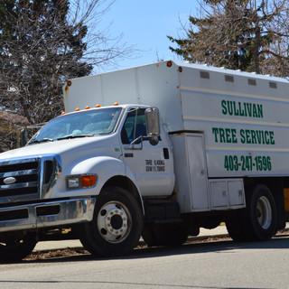 Equipment large forestry truck.JPG