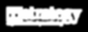 TIStrategy-Logo-White.png