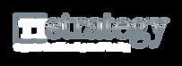 TIStrategy_Logo_Web.png