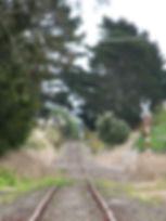 Dargaville Rail carts 9.JPG