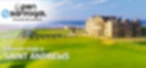 Open-Santogal-web.jpg