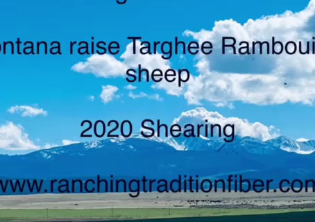The Full Story of Tobacco Root Valley Yarns by Ranching Tradition Fiber